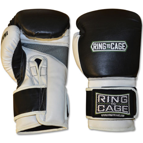 Боксерские перчатки для спарринга Ring to Cage Economy Deluxe MiM-Foam 2.0
