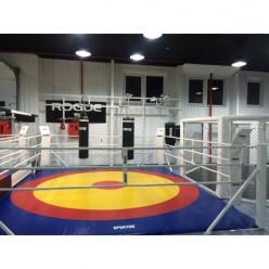 Боксерский ринг напольный Sportko