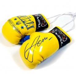 Сувенирные перчатки Rival Loma Edition